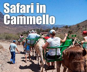 Safari in cammello
