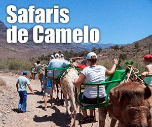 Safaris de Camelo